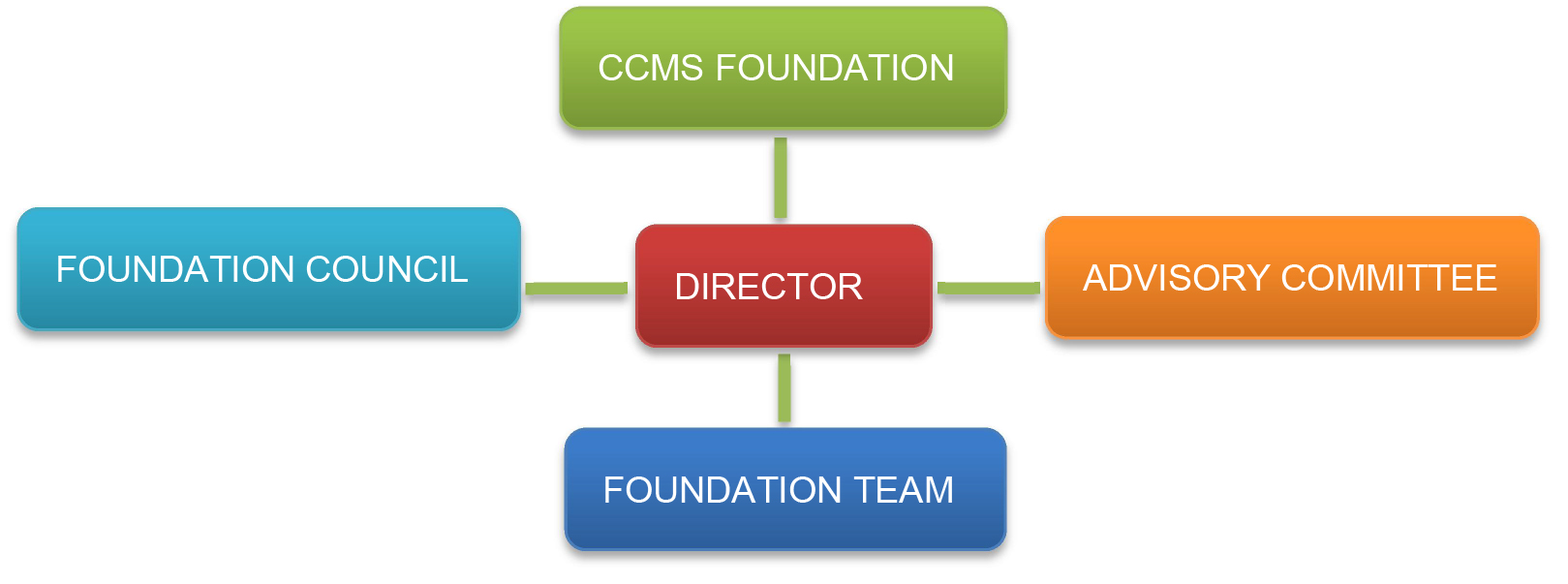 CCMS Governance Structure